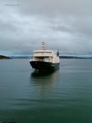 """""""Salangen"""" (OlafHorsevik) Tags: salangen stangnes reserveferge torghattennord thn ferge ferga ferry ferja ferje"""