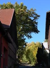 (:Linda:) Tags: germany thuringia village bürden oaktree barn path
