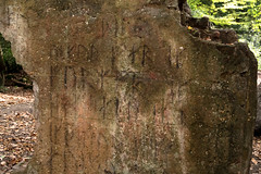 Runes | Autumn 2018 in south London | Sydenham Hill Wood-22 (Paul Dykes) Tags: london england unitedkingdom gb uk crystalpalace autumn fall autumncolours fallcolors