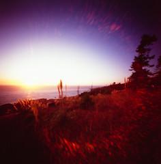 Dreaming of a Pacific Sunset (george.bremer) Tags: california vignette dreamlike dream 6x6mk2 coast film flare fuji light ocean ondu pacific pinhole provia400x rxp scan silhouette sonoma sunset vuescan autumn fall