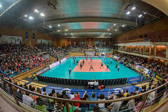 _FPV3353 (américodias) Tags: viana365 benfica sporting voleibol fpv