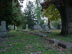 Graveyard (Evil Game Boy) Tags: graveyard cemetery