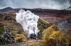 The Last Jacobite of 2018 (petebristo) Tags: landscape scotland jacobite steamtrain steam thejacobite autumn train transport trains