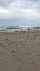 This dog kept leaping like this down the beach (jkerssen) Tags: oregon oregoncoast manzanita