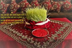 Dashain Shlokas (6) (niketa579) Tags: dashain postcard wallpaper jamara tika mantra shloka durga pooja festival greetings wishes