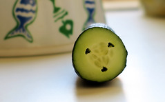 Cucumber face (Alfredo Liverani) Tags: canong5x canon g5x pointandshoot point shoot ps flickrdigital flickr digital camera cameras cibo food lebensmittel aliments alimenti alimento kitchen cucina inthekitchen incucina 2642018 project365264 project365092118 project36521sep18 oneaday photoaday pictureaday project365 project project2018 2018pad