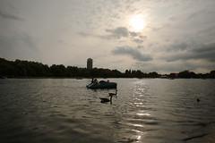 Al boating lake, Regent's Park (falco di luna) Tags: londra london boatinglake regentspark