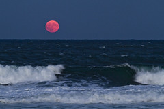 Rising Moon, Breaking Wave (brucetopher) Tags: moon moonrise rise rising red pink glow orb surf water wave breakers ocean crash crashing harvestmoon harvest september maninthemoon whitewater hover above tide pull gravity attraction attract tidal fullmoon full