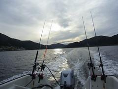 Norwegen ein Traumland (michaelschneider17) Tags: norwegen natur angeln fischen erleben traumhaft schön