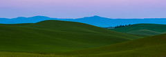 Steptoe Butte (ValeTer_) Tags: grassland sky highland green hill ecosystem pasture field plain prairie nikon d7500 usa wa washington steptoe butte landscape nature steptoebutte