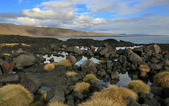Lava beach II (hó) Tags: herdísarvík iceland basalt lava rocks water sea sky cloud landscape september 2018 grass