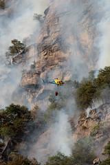 Helikopter bei Löscharbeiten beim Waldbrand - Brand im Wald ( forest fires incendi di boschi feux de forêt ) ob Biasca in den Tessiner Alpen - Alps im Sopraceneri im Kanton Tessin - Ticino der Schweiz (chrchr_75) Tags: hurni christoph schweiz suisse switzerland svizzera suissa swiss chrchr chrchr75 chrigu chriguhurni chriguhurnibluemailch september 2018 albumzzz201809september waldbrand brand feuer wald forest fires incendi di boschi feux de forêt biasca tessiner alpen alps sopraceneri kanton tessin ticino helikopter helicopter helikopteri hélicoptère elicottero helicóptero heli albumhelikopterinderschweiz