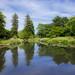 L'étang - Parc de la Beaujoire (Nantes)