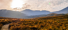 Layered Mountains (bhrushank1) Tags: mountains hike hiking travel landscape grass nature newzealand tongariro alpine crossing clouds sky