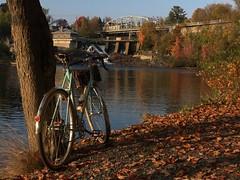 Fall in muskoka (c.c.pinto) Tags: routens mafac mavic randonneur cyclotouriste muskoka berthoud joroutens tacranks ta velo orange veloorange