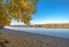Autum Danube river (Torok_Bea) Tags: duna river dunariver tököl homeriver landscape nikon nikond7200 d7200 nikon1680 beautiful color ősz danuberiver danube hungary oktober autumn autumncolor