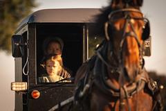 Amish People (antoinedellenbach.com) Tags: classic canon eos vintage sport course lightroom usm parade usa color photography roadtrip cruising 70200 landscape city sunset people amish lancaster ronks pennsylvania kids 5d 5d3 5dmarkiii woman horse atmosphere portrait young