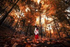 Deep Autumn (abuwhobi) Tags: sony a7r2 fe1224 azone doll