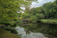 Peaceful Pond (JMS2) Tags: nature park bridge walk leisure outdoor scenery scenic armonk kerstinfranktexture