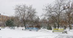 79470042 (aniaerm) Tags: snow ice frost