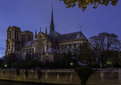 Notre Dame Cathedral Goes Blue (Daniel P Froese) Tags: notre dame notredame cathedral blue hour bluehour night city church paris france nightscape dark photo image picture photos images pictures