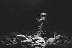 295/365 - Stone Dalek (Forty-9) Tags: bw blackandwhite stonedalek dalek doctorwho october photoaday monday 22102018 22ndoctober2018 day295 295365 project3652018 3652018 2018 365 project365 strobism strobist flash forty9 tomoskay yongnuospeedliteyn560iv yongnuo lightroom efs1785mmf456isusm efslens eos60d canon