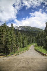 52 in 2018 Challenge - #39 - Country Road (crafty1tutu (Ann)) Tags: challenge 52in2018challenge 39countryroad travel holiday 2018 canadaandalaska canada country road trees forest pine dirt sky clouds crafty1tutu canon5dmkiii canon24105lserieslens anncameron naturethroughthelens wood tree mountain grass