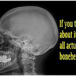 boneheads meme thumbnail