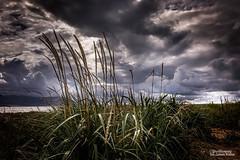 Welsh Sky (Peeblespair) Tags: northwales wales storm sky clouds peeblespair raelawsonstudios