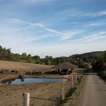 Wanderung von Pansfelde nach Stangerode und zurück thumbnail