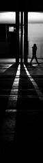 L1010486.jpg (Butters.photo) Tags: night messeplatz winter ligh person column shadows switzerland basel
