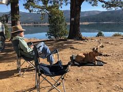 Boca camp (simonov) Tags: boca reservoir car camping man dog simonov bella