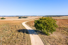 Way of life (Giancarlo - Foto 4U) Tags: c2018 2 dji giancarlofoto hasseblad landscape mavic pro campagne way life chemin field