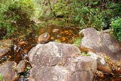 Chapada Diamantina - Ba/Brasil (AmandaSaldanha) Tags: nature natureza spring primavera bahia brasil chapadadiamantina parquenacional colours cores green river landscape paisagem