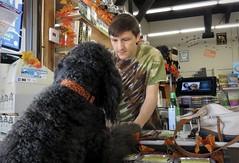 Benni goes shopping (Bennilover) Tags: dog dogs petstore kibble solution bottles shopping petsupplywarehouse nick owner labradoodle benni treats