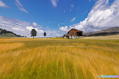 Little House on the Prairie *A Beautiful Nature* (iLOVEnature's Photography Inspiration) Tags: littlehouseontheprairie abeautifulnature sky cloudscape clouds grass valley wyoming montana us usa nature landscape macro michaellandon wildgrass field mountain