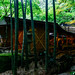 Kyuukouan Takenoniwanochaseki (teahouse) in Hokoku-ji Temple in Kamakura : 報国寺 休耕庵 竹の庭の茶席(鎌倉市浄明寺)