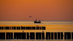 _OLY0098 (dadudawien) Tags: sonnenuntrgang ostsee penf fischerboot niechorce