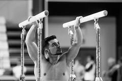 ginastica_doha_21out2018_treinomasc_abelardomendesjr-36 (Ministerio do Esporte) Tags: doha mundialdeginásticaartística qatar ginásticaartística