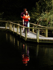 Off the Shoulders and Off the Water (Steve Taylor (Photography)) Tags: boardwalk couple digitalart orange purple black green contrast blue water lake wooden man woman lady newzealand nz southisland canterbury christchurch bush walking strolling foliage shadow reflection curvy