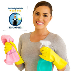 housewife doing housework (HouseCleaningCoralGables) Tags: southafrica woman cleaning home household liquid product cleaner chores house portrait female duties hygiene caucasian adult domestic girl housekeeping gloves bottle spray housework cloth cleanliness beautiful pretty gorgeous attractive cute casual apartment modern indoors standing happy smiling furniture empty new white