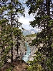 Gorge (Horizon Enterprises) Tags: siffleur falls gorge hike trail canada alberta davidthompson country staging area north saskatchewan river trees walk narrow boardwalk view rivier passage pas kloof route way waterval plunge cascades drop dangerous woods forest green blue bos wald foret wandelen hiking trek mountains rockies rocky david bergen montagne abraham