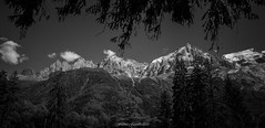 Balcon des Lumières (Frédéric Fossard) Tags: landscape mountain forest tree sky mountainside vallée valley cimes crêtes arêtes chamonix massifdumontblanc mountainrange mountainridge panorama alpes hautesavoie monochrome noiretblanc blackandwhite mountainpeaks picdemontagne aiguillerocheuse aiguilledumidi balconnord