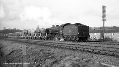 01/02/1964 - Hessle, East Yorkshire. (53A Models) Tags: britishrailways thompson lner b1 460 61065 steam freight hessle eastyorkshire train railway locomotive railroad