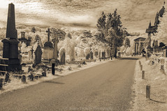 The Path II (James Etchells) Tags: arnos vale garden cemetery bristol city urban ir infrared sepia old antique photographic toning effect 18th century eighteenth nikon photography tomb tombs landscape landscapes sky clouds colour color architecture ancient experiment exploring past heritage natural world nature light south west england uk britain monument abandoned overgrown statue
