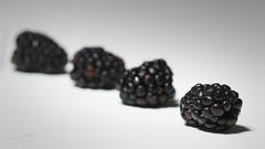 Blackberries (James Milstid) Tags: fruit blackberry dof shallowdof macro canonef100mmmacro macromondays