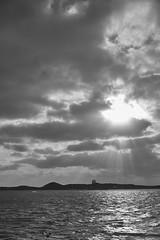 Rays #3 (Stueyman) Tags: sony alpha a7 a7ii 55mm zeiss za wa au australia perth rockingham sea ocean clouds sky island westernaustralia indianocean penguinisland bw blackandwhite noiretblanc monochrome
