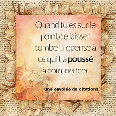 Laisser tomber (proverbecitationweb) Tags: citation proverbe quote motivation inspiration