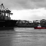 Containerterminal Altenwerder S1#3 thumbnail