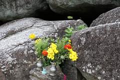 Ishibutai Tumulus (yukky89_yamashita) Tags: 奈良 明日香村 石舞台古墳 古墳 古墳時代 横穴式石室 nara asuka japan village flower 7世紀 7thcentury